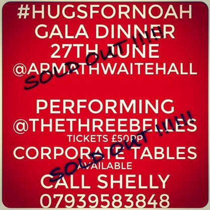 Hugs For Noah Gala Dinner 2014
